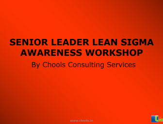 senior manager lean (1)